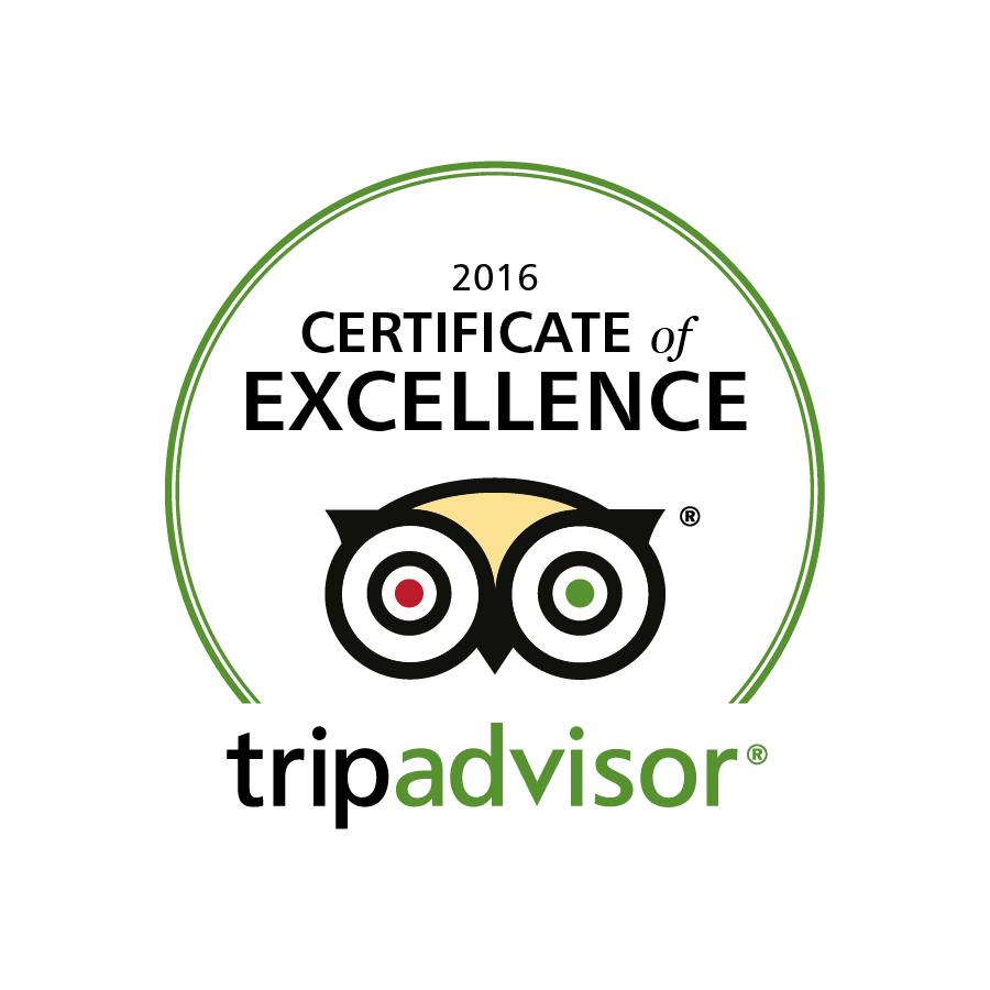 Tripadvisor Logo_COE2016_en_UK